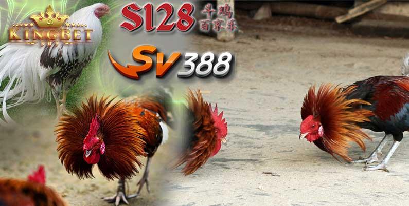 Agen Sv388